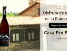 NOVIEMBRE y DICIEMBRE: Regalo vinos bodega Adega Penas das Donas en tus reservas.
